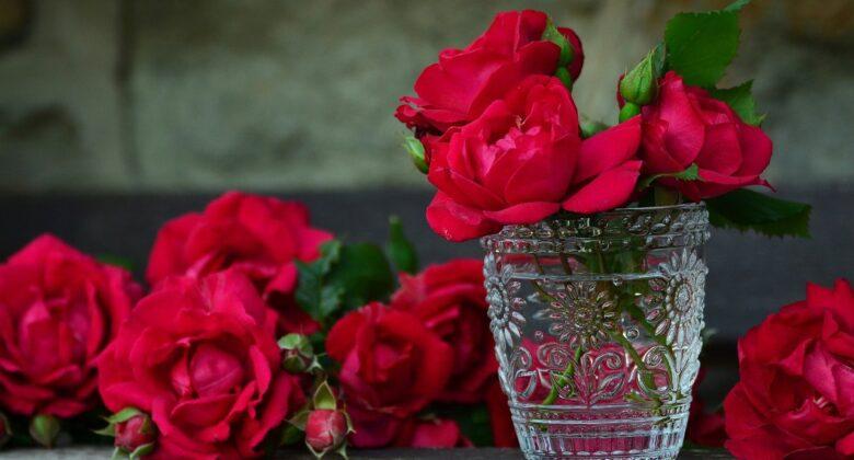 significado numero de rosas